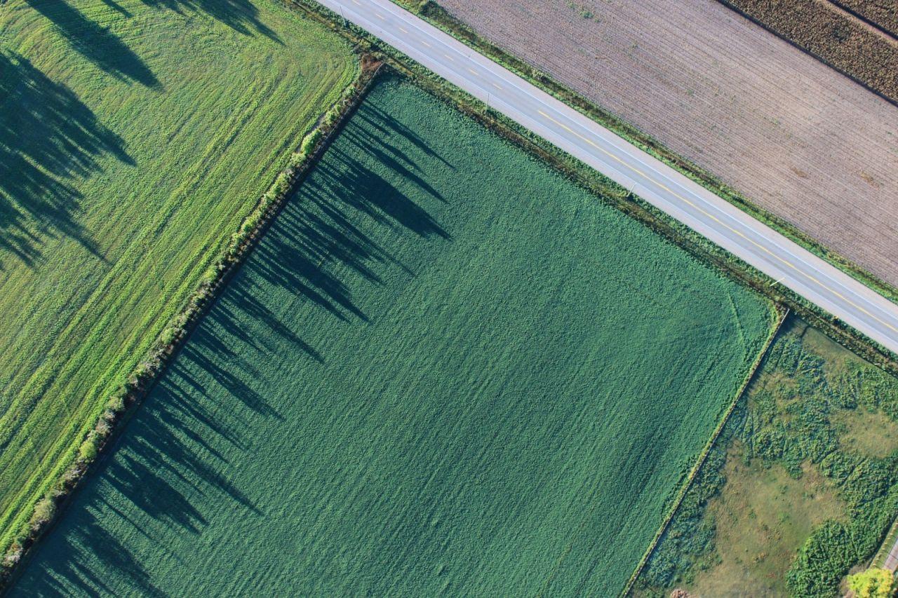 Obavijest o početku javnog uvida u prijedlog Programa raspolaganja poljoprivrednim zemljištem u vlasništvu Republike Hrvatske na području Grada Skradina